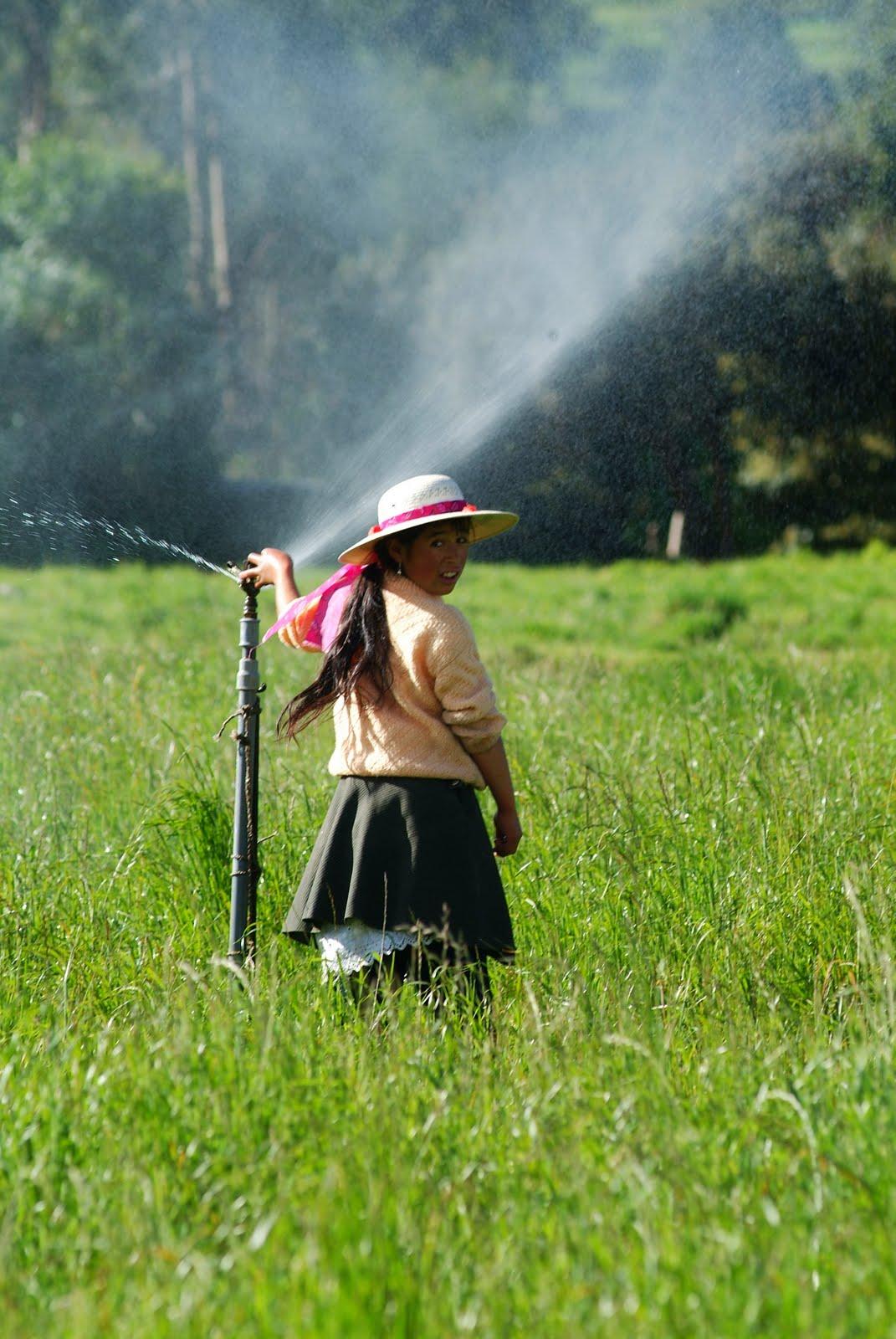 D a del campesino feliz d a del agricultor gesti n for Aspersores para riego de jardin