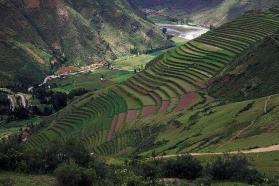 Andenes de Pisac - Cusco