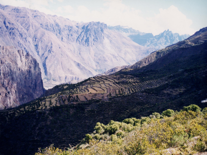 Andeneria Valle Patacancha