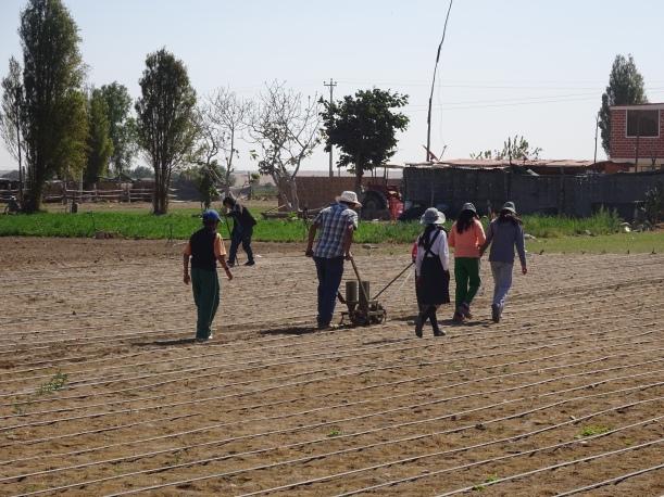 Maestro rural enseñando tecnificación del riego....