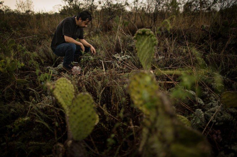 Ciudad de México yace sobre una mezcla de suelo volcánico y lechos de lago de barro