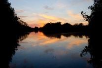 santuario-nacional-los-manglares-de-tumbes-06