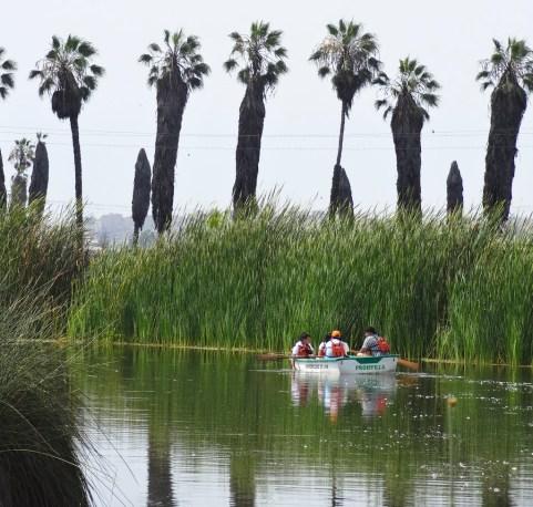 zona-reservada-los-pantanos-de-villa-3