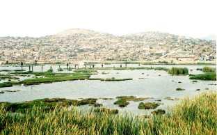 zona-reservada-los-pantanos-de-villa-5