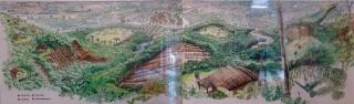 El origen del valle de Palmira es lacustre, por las evidencias mostradas y finamente representadas en el esquema que se muestra. Donde al igual que en Perú, se usaron terrazas y camellones donde desarrollaron agricultura en zonas inundadas que llamamos en Perú waru waru
