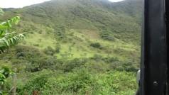 Mientras en Colombia la naturaleza hace su labor de riego, en Perú se debe considerar como una partida adicional el riego por parte de las comunidades donde se desarrolla el proyecto