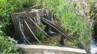 Pero a la vez notamos que se debe hacer un mejor uso del agua, quizás no sientan la necesidad de su cuidado en la medida que la tienen en abundancia, pero que pone en serio riesgo inversiones importantes en la cuenca
