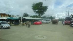 Llegamos a Restrepo ciudad a las 2.15 pm en el Parque Principal, que en Perú llamamos Plaza de Armas, tienen el mercado donde se oferta una variedad de frutas y productos de la zona.