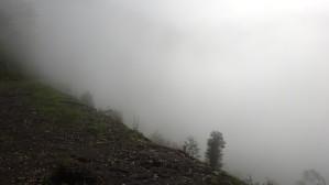 pasamos a una condición de neblina cerrada (08.04 am). Llamamos a ello la DANZA DE LA NATURALEZA.