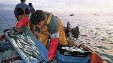 el pescador artesanal...los héroes olvidados en esta pandemia